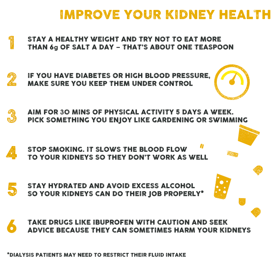 Kidneys The Facts World Kidney Day